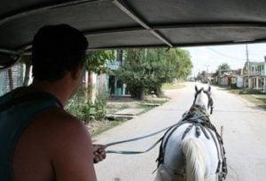 social media cart 300x205 Dont Put the Social Media Cart Before the Horse