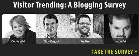 blogging survey