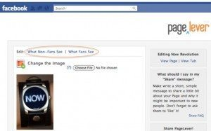 pagelever 300x187 5 Staggeringly Simple Ways to Create Custom Facebook Landing Tabs