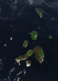 Content Archipelagos