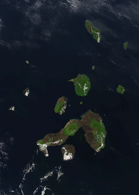 galapagos Abandonment Issues   What To Do with Content Archipelagos