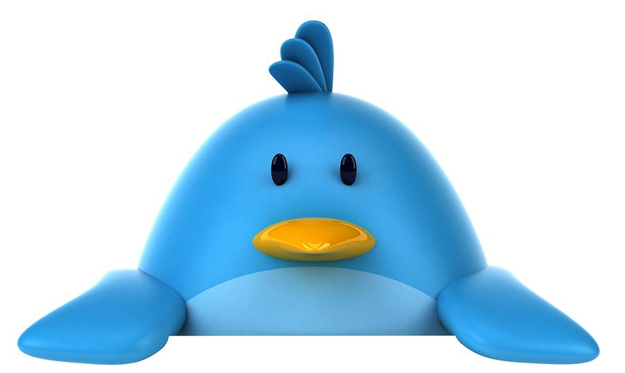 bigstock Blue bird 32532494 Social Pros 30   Eric Schwartzman, Social Media Boot Camp