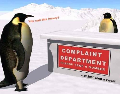 Penguins social media complaints e1365819216900 How Social Media and Smartphones Breed a Petri Dish of Negativity