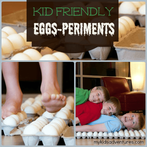 ss eggshell collage Improving Family Life, One Blog Post at a Time