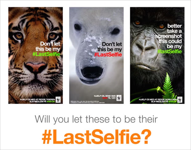WWF #lastselfie