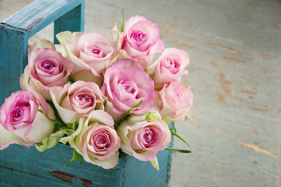 bigstock Roses In An Old Blue Wooden Ba 45375967 How PassionRoses Reached Out to the Right Celebrity at the Right Time