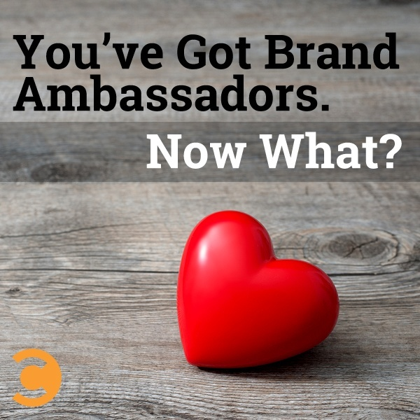 You've Got Brand Ambassadors. Now What?