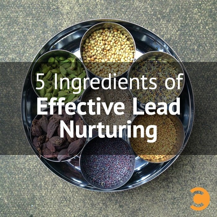 5 Ingredients of Effective Lead Nurturing