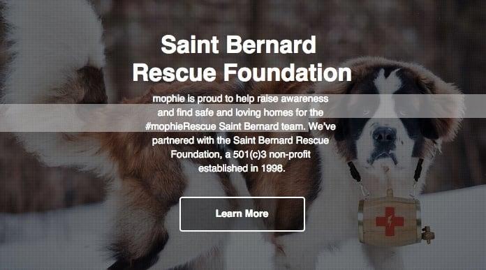 Saint Bernard Rescue Foundation