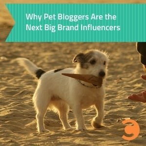 Why Pet Bloggers Are the Next Big Brand Influencers