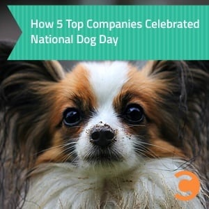 How 5 Top Companies Celebrated National Dog Day