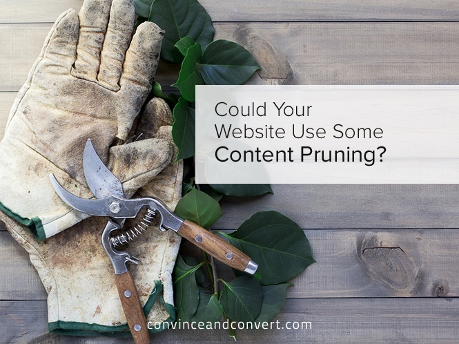 Could Your Website Use Some Content Pruning
