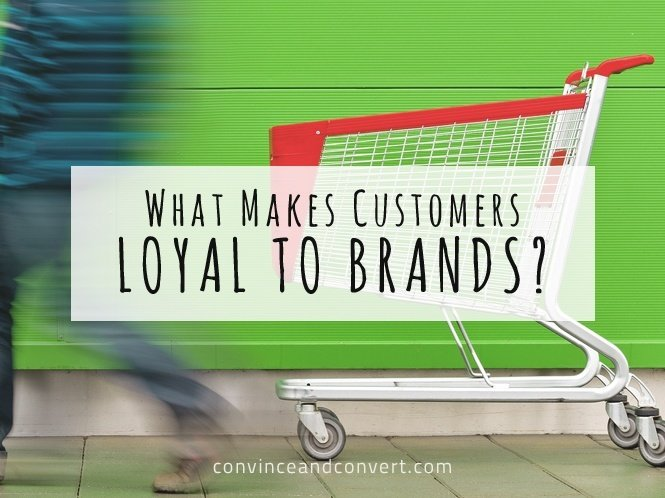 What Makes Customers Loyal to Brands