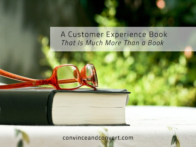 A Customer Experience Book That Is Much More Than a Book