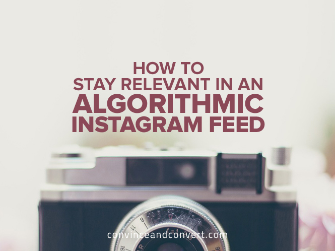 How to Stay Relevant in an Algorithmic Instagram Feed