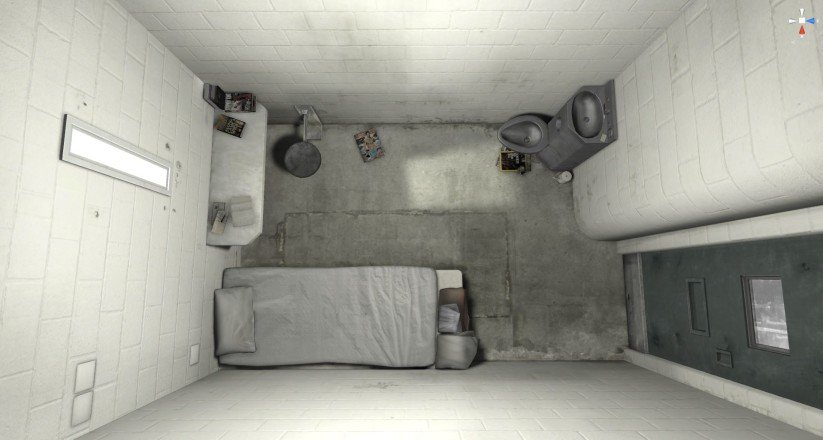 Guardian solitary confinement virtual reality