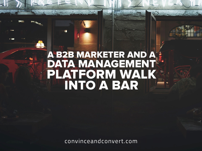 A B2B Marketer and a Data Management Platform Walk Into a Bar