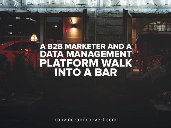 A B2B Marketer and a Data Management Platform Walk Into a Bar