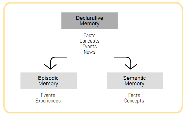 episode and semantic memory