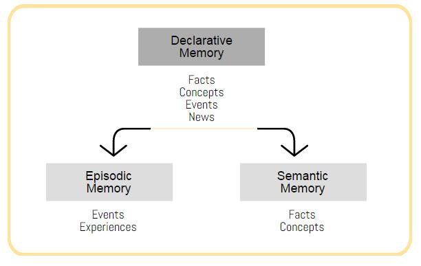 episode and semantic memory