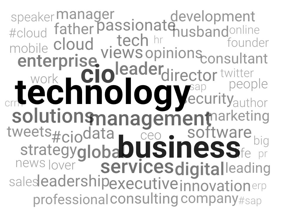 Top Bio Keywords of CIOs