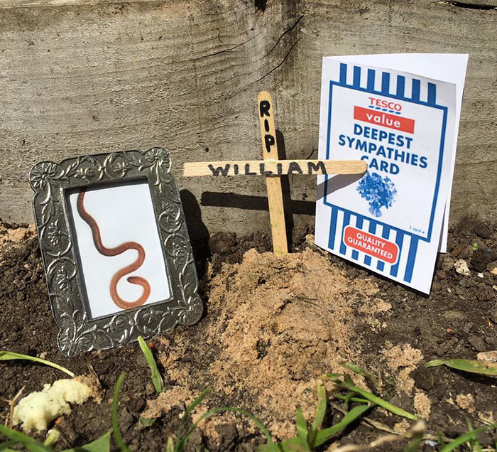 Tesco worm funeral photo