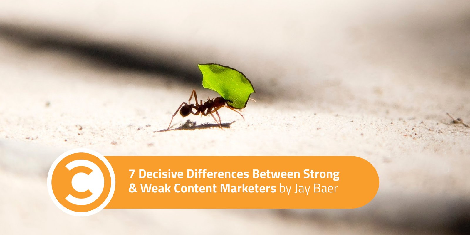 7 Decisive Differences Between Strong and Weak Content Marketers