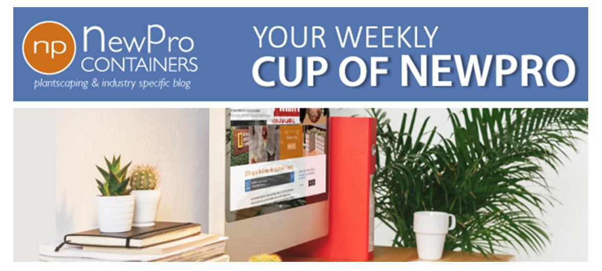 NewPro newsletter