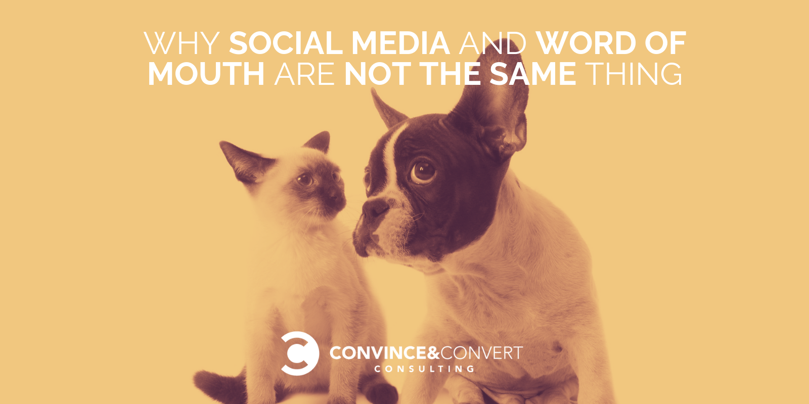 why social media word of mouth not the same thing