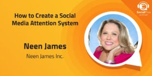 How to Create a Social Media Attention System