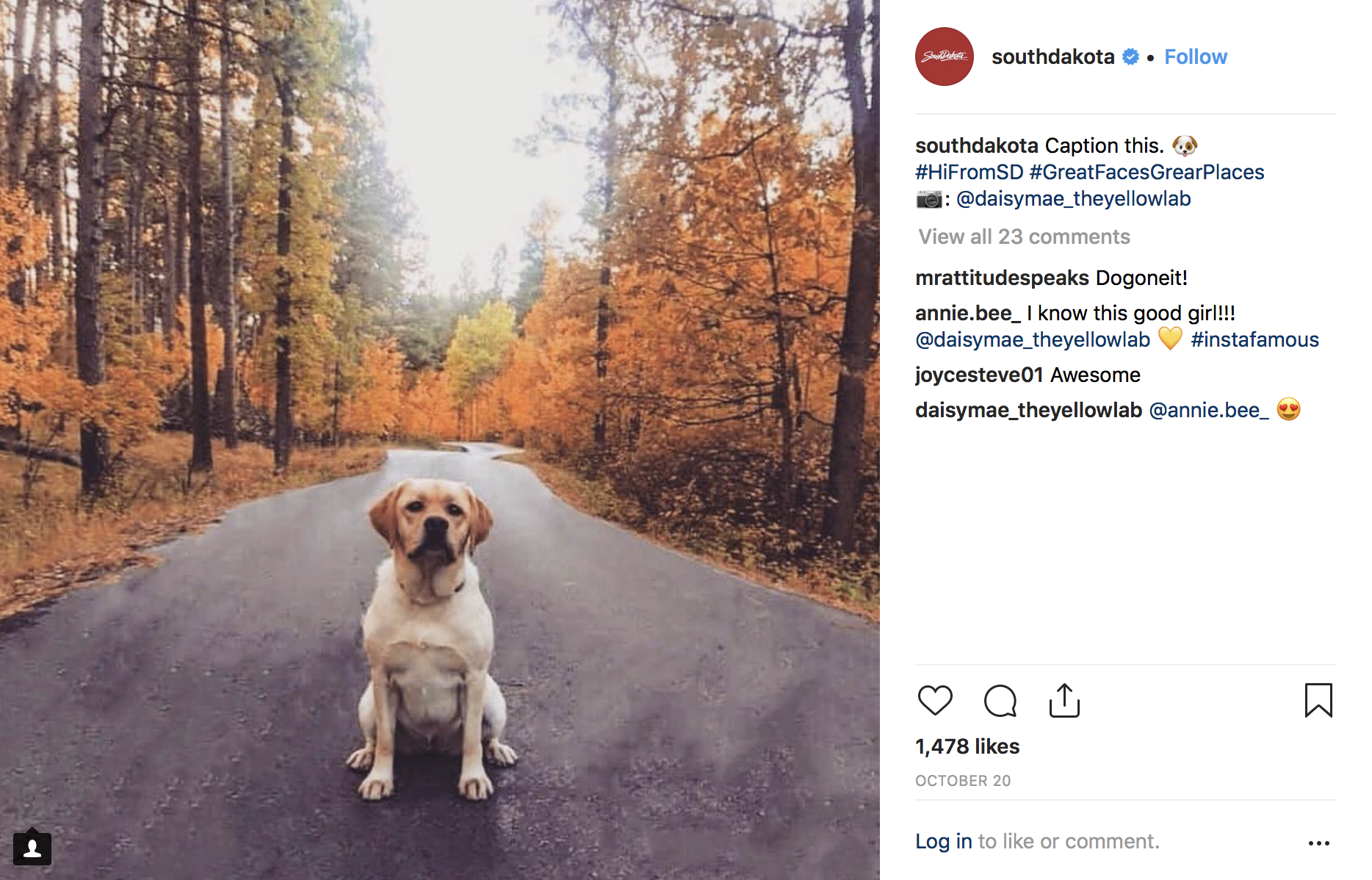 South Dakota instagram engagement
