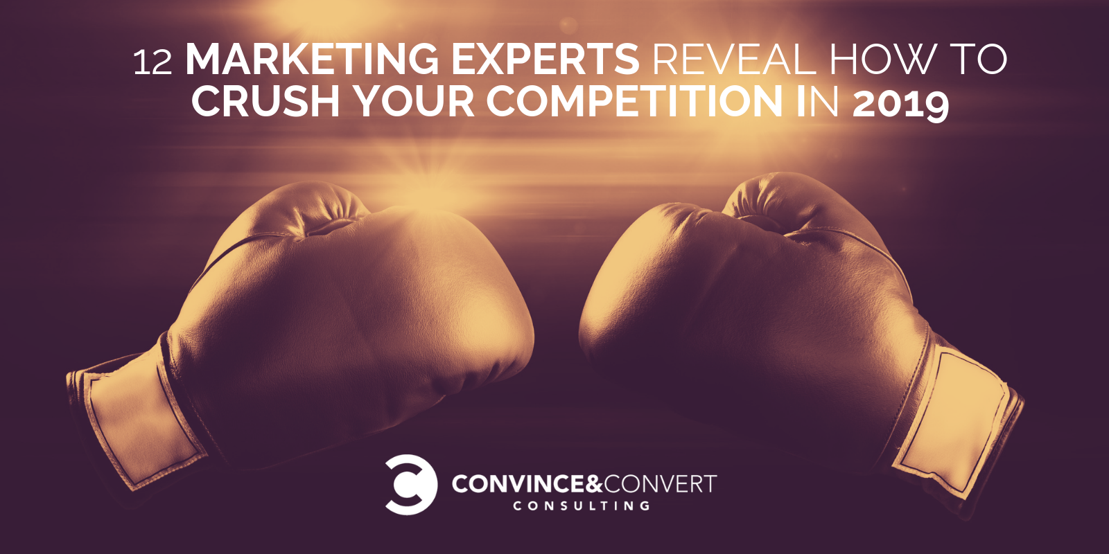 12 Marketing Experts Reveal How to Crush Your Competition in 2019