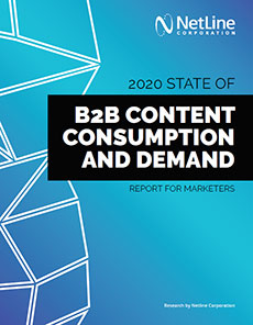 NetLine B2B consumption and demand