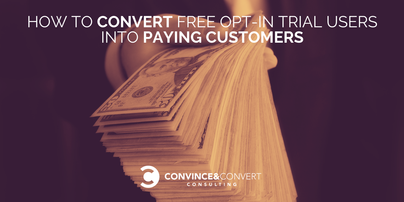 How to Convert Free Opt-in Trial Users into Paying Customers