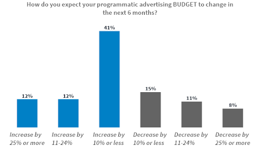 Programmatic advertising budget
