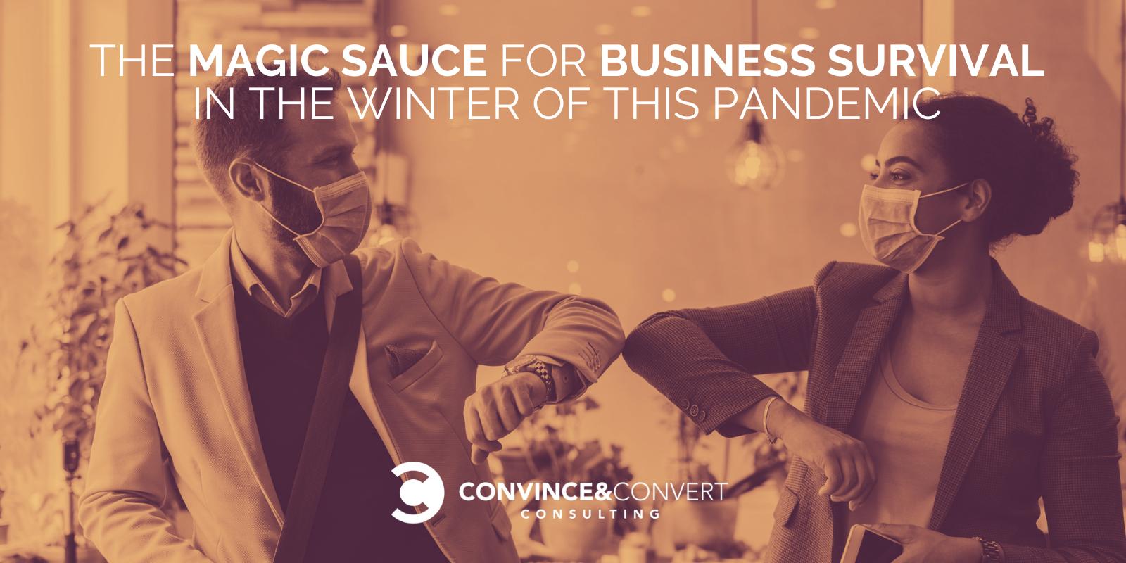 Business Survival Pandemic